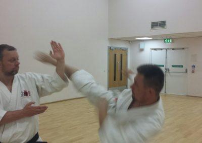 mawashi geri practice
